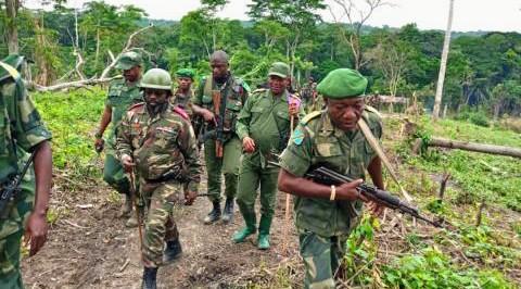 Nord-Kivu / Beni : la localité de Loselose désormais sous contrôle de l'armée loyaliste