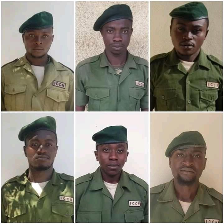 RDC : 6 gardes du Parc Virunga tués par des présumés rebelles Mai-Mai
