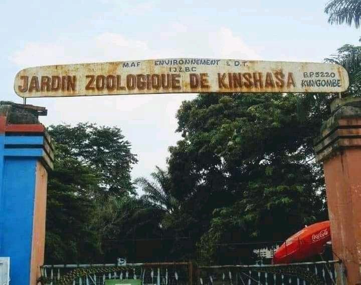 Kinshasa : le ministre Modero Nsimba lance les travaux de réhabilitation du Jardin Zoologique