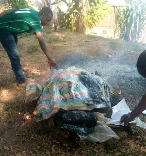 Lomami : Le parquet près le tribunal de paix de Mwene-ditu incinère plusieurs colis de chanvres saisis à la gare SNCC à Mwene-ditu