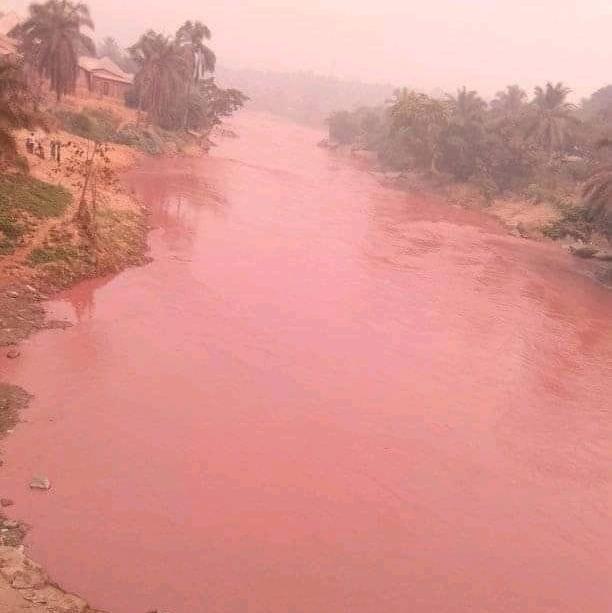 Kasaï/Tshikapa : La population appelée à ne pas utiliser les eaux de la Rivière Tshikapa ni en manger les poissons